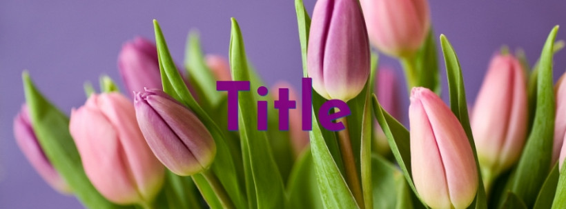 Tulips Facebook cover template photo